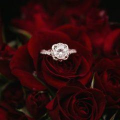 Μονόπετρο δαχτυλίδι επάνω σε κόκκινα τριαντάφυλλα